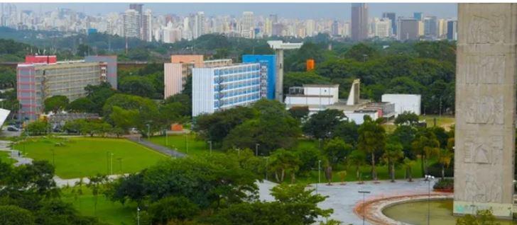 Marketing digital é um dos temas de cursos online da Universidade de São Paulo