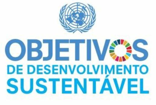 Webinário da FEBAB discute a participação das bibliotecas na Agenda 2030 da ONU